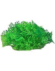 Haibinsuo Konstgjord växt för fiskbehållare, vattenväxter simulering akvarium dekoration plast falskt vatten gräs ornament för fest