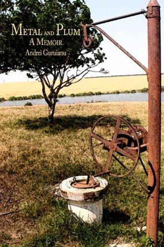 Metal and Plum: A Memoir