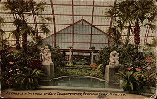 Entrance Interior Of New Conservatory Garfield Park Chicago Illinois Il Original Vintage Postcard At Amazon S Entertainment Collectibles Store