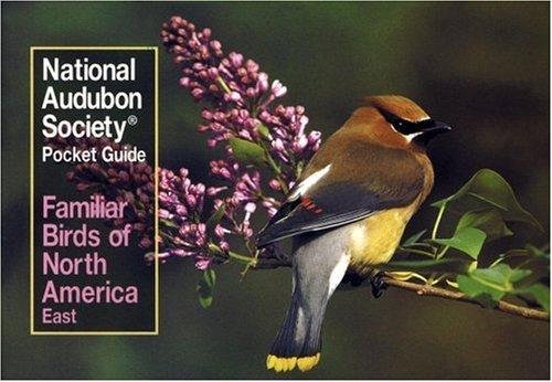 Familiar Birds of North America: Eastern Region (National Audubon Society Pocket Guides)