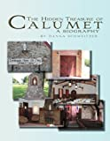 The Hidden Treasure of Calumet, Danna Schweitzer, 1477135847