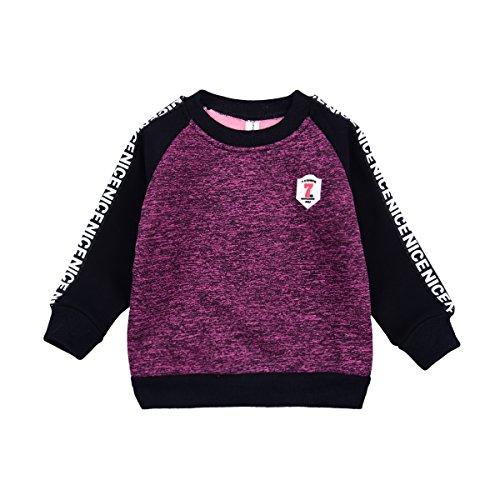 Boys Purple Sweater