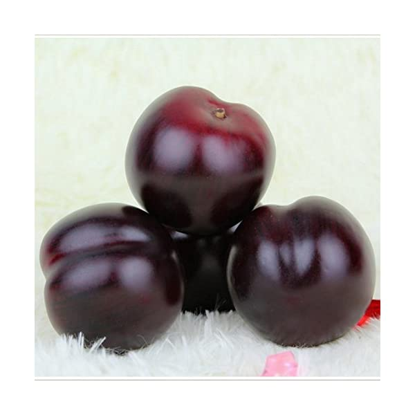 Gresorth-8pcs-Artificial-Realistic-Brin-Plum-Fake-Fruit-Home-Party-Decoration-Food-Toy-Photography-Props-Model