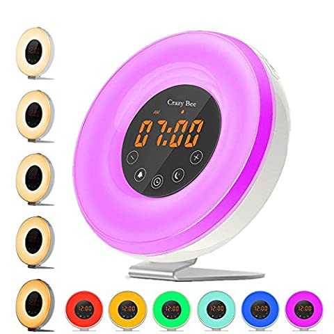 Sunlight Alarm Clock,Best Sunrise Wake Up Light with 6 Nature Sounds For Heavy Sleepers.FM Radio, Touch Control With USB Charger, Sunset Simulator Alarm - Low Target Sets