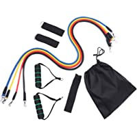 Resistance Bands Fitness Exercises Resistance Bands Isolation Belt for Home Workouts, Physical Therapy Resistance Training - Exercise Bands with Handles, Door Anchor and Ankle Straps