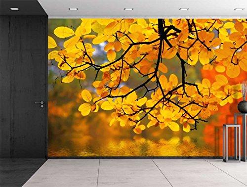 Yellow Branch Trees Framing a Lake Wall Mural