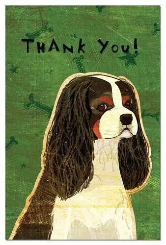 Tree-Free Greetings Eco-Notes Thank You Card Set, 4 x 6 Inches, 12-count Cards with Envelopes, Tri-color Cavalier King Charles - The Card Gift Greene