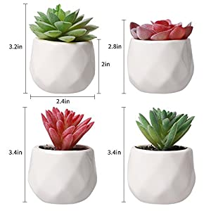AmyHomie Artificial Plants Set of 4 Mini Fake Succulent Plants with Pots for Home Weeding Office Decoration 4