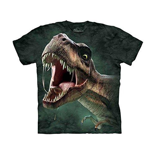 UPC 807158203426, The Mountain Kids T-Rex Roar T-Shirt, Small, Green