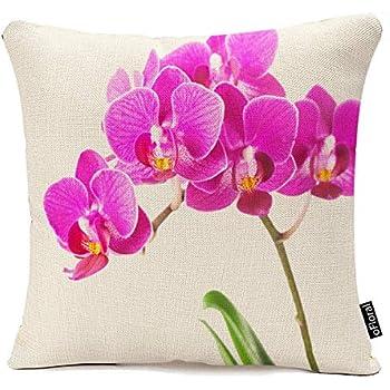 Amazon.com: Decors, Rosa y Morado Dendrobium Orquídea Flor ...