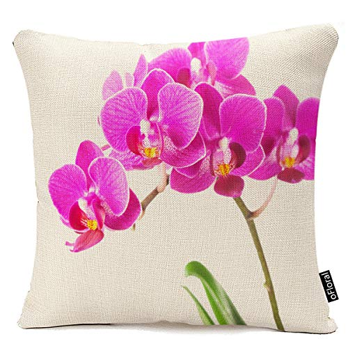 oFloral Pink Purple Dendrobium Orchid Tropical Flower Throw Pillow Case Cushion Cover Home Sofa Decorative 18 X 18 Inch Pillow Cover ()
