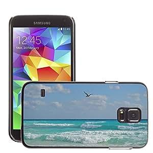 Etui Housse Coque de Protection Cover Rigide pour // M00110755 Pelícano Pájaro Playa Mar // Samsung Galaxy S5 S V SV i9600 (Not Fits S5 ACTIVE)