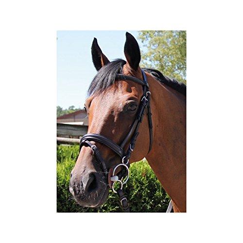 Bridon San Remo – brio- Nero Cavallo