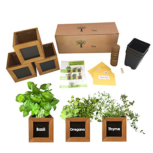 Indoor Herb Garden Kit - Includes 3 Wooden Herb Pots, Internal drip Trays, Soil Pellets, Chalk, Instructions Booklet and Basil, Oregano & Thyme Non GMO Herb Seeds. DIY Kitchen Herbs Growing Kit. (Window Herb Garden Kit)