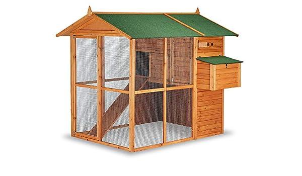 Gaun Caseta Aves Modelo Bruselas, 10230: Amazon.es: Productos para ...