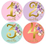 Mumsy Goose Month Stickers Baby Girl Milestone Stickers 1-12 Months Girl 1st Year Stickers Pink Gold Floral