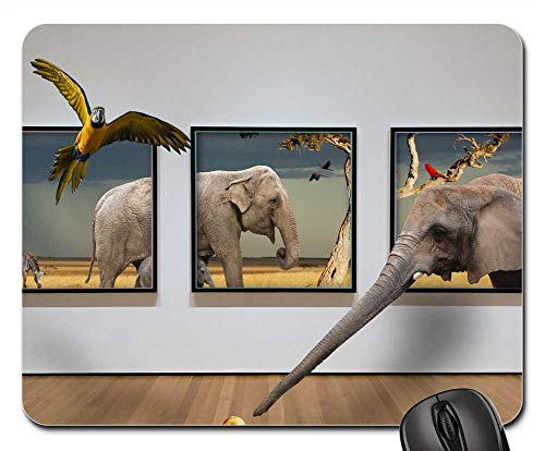- Mouse Pad - Picture Frame Animal Background Nature Safari