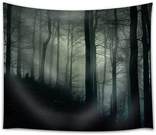 Dark Forest on a Hill Covered with Fog