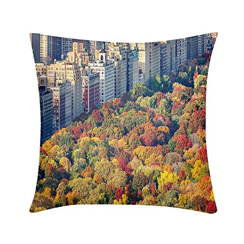 Custom Soft Wrinkle-Resistant Throw Pillow Fall Foliage and Central Park West Manhattan New York City Design for Sofa Bedroom Office Car Decorate Pillow
