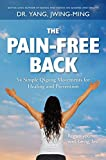 The Pain-Free Back: Gentle Qigong Movements for Healing and Prevention