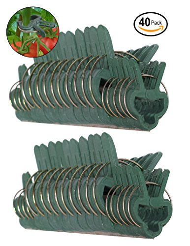 Ram-Pro 40 piece Green Gentle Gardening Plant & Flower Lever Loop Gripper Clips, Tool for Supporting or Straightening Plant Stems, Stalks, and Vines (Garden Tomato Plants)