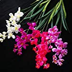 jiumengya-10pcs-Artificial-Freesia-Flower-Fake-Butterfly-Orchid-Silk-Cattleya-White-Color-14-Heads-Cymbidium-Orchid-Flowers-White