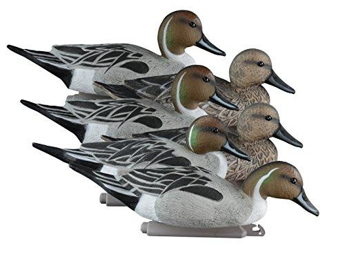 - Higdon Outdoors Standard Pintail Decoys, Foam Filled