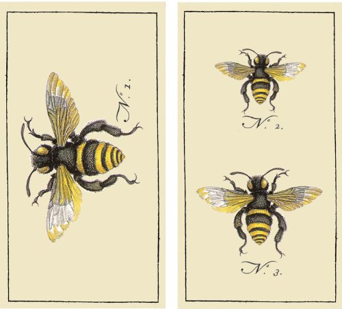 HomArt Large Decorative Insects Bee Matches]()