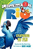Rio: Learning to Fly