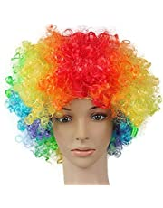 Halloween Clown Disco and Fans - Multicolored Wig