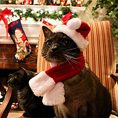 PULEIDI Pet Dog Cat Santa Hat Costume - Christmas Cat Costume with Hat and Scarf for Small Dogs, Perfect for Holloween,Holiday, Christmas,Party, Photos