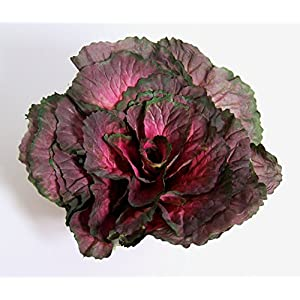"Designer XLarge Artificial Faux Fake Purple Kale with 3.5"" Stem Vegetable 89"
