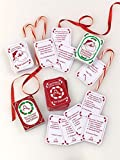 Fun World  Miles Kimball Christmas Trivia Cards Accessory, -Multi, Standard