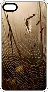 Spider & Web Clear Rubber Case for Apple iPhone 5 or iPhone 5s