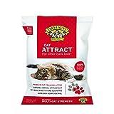 Dr. Elsey's Cat Attract Cat Litter FamilyValue 120lb-OAR-Precious