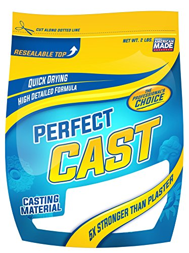 Cast & Paint 2lb PerfectCast Casting (Cast Plaster Molds)