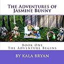 The Adventures of Jasmine Bunny: The Adventures of Jasmine Bunny, The Adventure Begins (Volume 1)