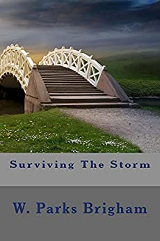 Surviving The Storm by [Brigham, W. Parks]