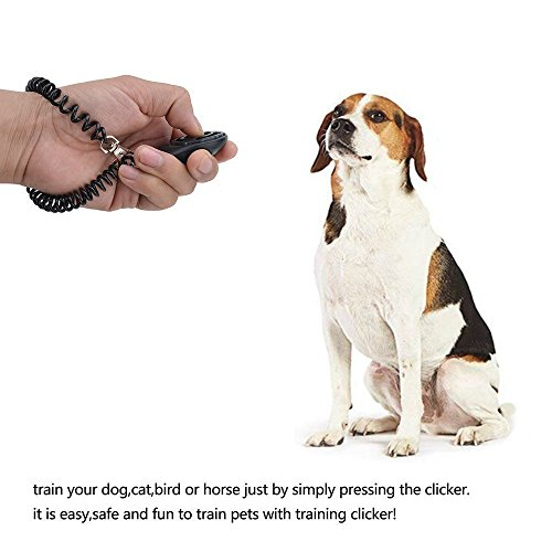 Large Product Image of Dog Training Clicker with Wrist Strap - Pet Training Clicker, Big Button Clicker Set, 2-Pack(Blue + White)