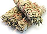 White Sage Smudge Sticks - Organic - Large 9 Inch - 4 Pack - by EarthWise Aromatics