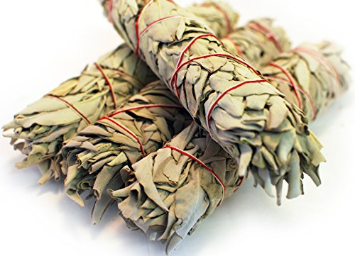 (White Sage Smudge Sticks - Organic - Large 9 Inch - 4 Pack - by EarthWise Aromatics)