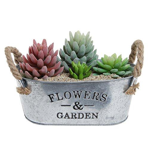 Rustic Flowers Succulent Container Handles