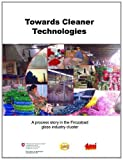 Towards Cleaner Technologies : A Process Story in the Firozabad Glass Industry Cluster, Girish Sethi, Ananda Mohan Ghosh, 8179931331
