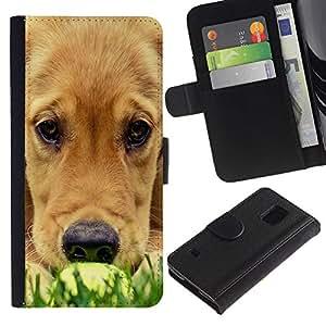 EuroCase - Samsung Galaxy S5 V SM-G900 - labrador golden retriever muzzle grass dog - Cuero PU Delgado caso cubierta Shell Armor Funda Case Cover