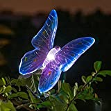 Ecoolbuy Garden Lawn Solar LED Path Light Bird Butterfly Dragonfly (Purple) Review