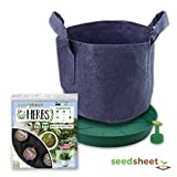 Home Garden Seeds - Seedsheet Grow Your Own Essential Herbs Organic Gardening Pods - Eco Friendly Fabric Container Included