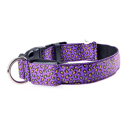 (DT Pet Shining Classic Solid Color Dog Collar Collection - Regular Collars, Seatbelts, Personalized Collars and Bandana (Large))
