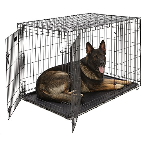 XL Dog Crate   MidWest iCrate Double Door Folding Metal Dog Crate w/ Divider Panel, Floor Protecting Feet & Leak-Proof Dog Tray   48L x 30W x 33H Inches, XL Dog Breed, Black