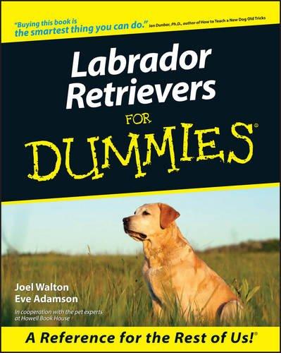 Retriever Dummies (Labrador Retrievers For Dummies)