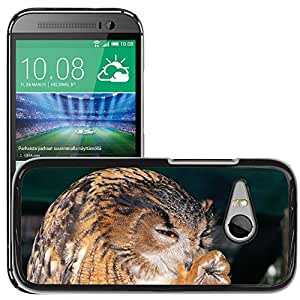 Super Stella Slim PC Hard Case Cover Skin Armor Shell Protection // M00147808 Owl Eagle Owl Bird Feather Animal // HTC One Mini 2 / M8 MINI / (Not Fits M8)